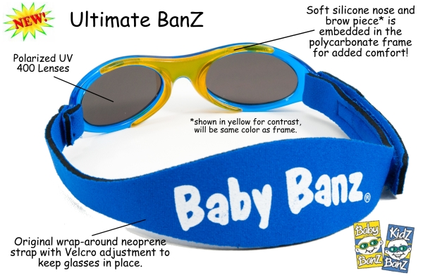 ultimatebanzschematic